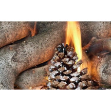 Traditional Pine Cone FireStarter